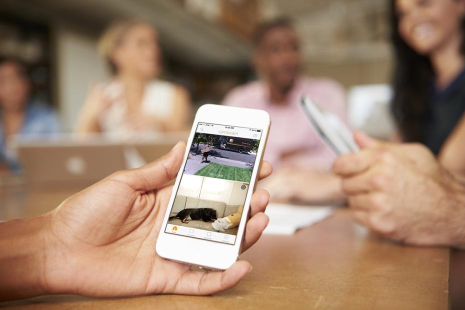 Camera IP – Supraveghere Video & Sistem de Alarmă într-un singur Device
