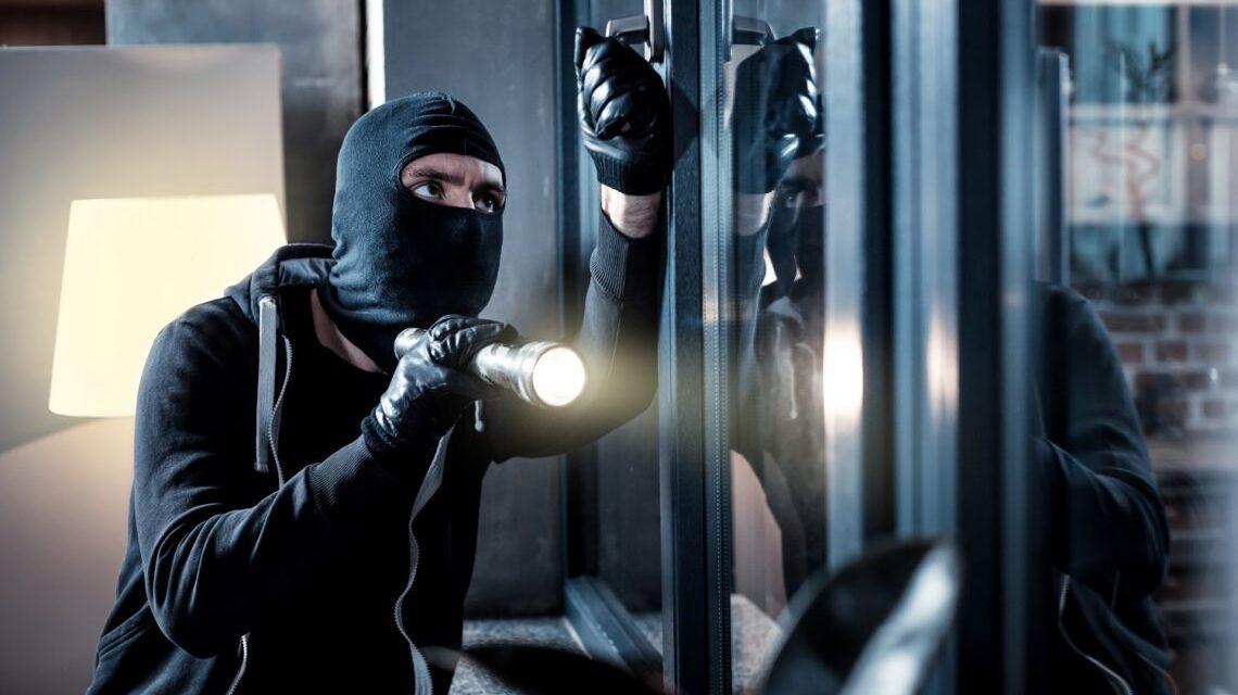De ce afacerea dvs. are nevoie de camere de supraveghere