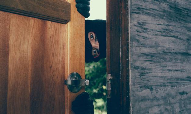 5 avantaje importante ale camerelor IP la domiciliu